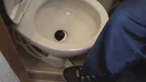 RV toilet flushing